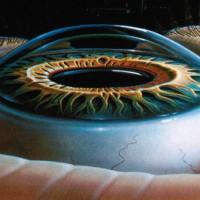 תמונה 1 - הקרנית היא רקמה שקופה וקמורה המהווה את החלון הקדמי של העין